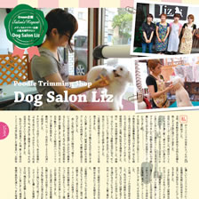 Dream企画 Salon's Report